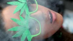 Шефът на СЗО се обяви против пълната легализация на марихуаната
