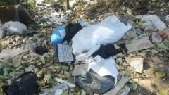 Алармират, че варненският некропол е затрупан от боклуци