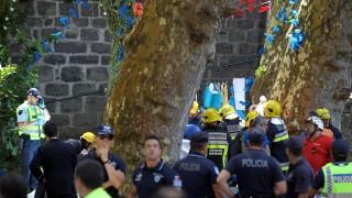 11 поклонници загинаха от паднало дърво в Мадейра