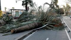 Силните бури в Европа причиниха смъртта на най-малко 9 души