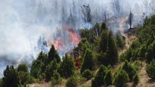 Продължава борбата с пожара в Кресненското дефиле