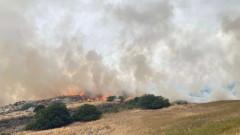 Италия иска от Европа противопожарни самолети за овладяване на пожарите в Сардиния