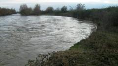 От екокатастрофа край река Марица се притесняват жителите на с. Мирово
