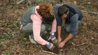 """Искат от Греков изолиране на """"Асоциация на парковете в България"""""""