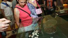 Хиляди се тълпят да видят тефтерчето на Левски на изложба в НС