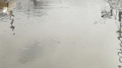 Обилни дъждове разрушиха път и наводниха гимназия в община Бяла