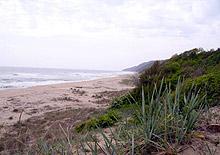 Откриха 2 трупа на плажове край Варна