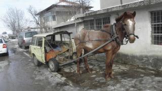 Мъж преби паднал кон с железен прът