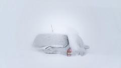Вандали потрошиха закъсали в преспите автомобили във Варненско