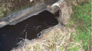 Река Камчия потече в черно