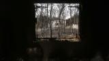 93-ма са загинали при пожарите в Гърция