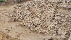 Тайната на кръговете от кости на мамути в Русия