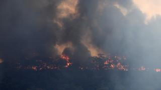 Токсичен дим покри Канбера