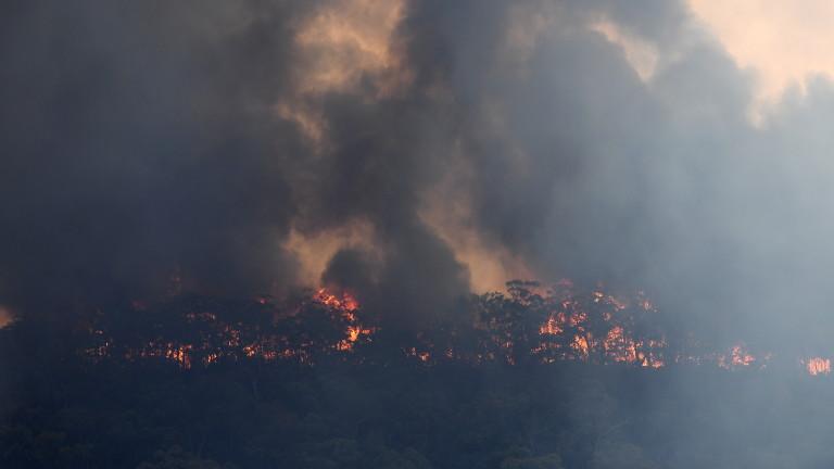 Токсичен облак дим от горските пожари в Австралия достигна столицата