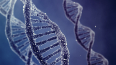 Изнудват учени, за да ни обявят за потомци на траките