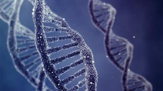 Полицията ще обменяме ДНК данни с Югоизточна Европа