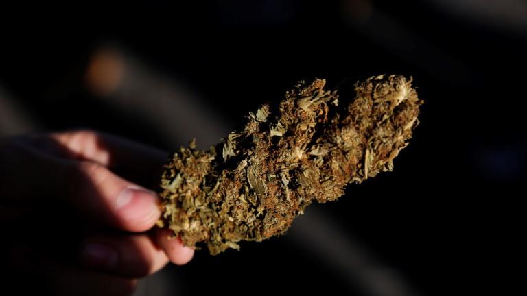 ООН премахна канабиса от списъка с наркотици като хероин