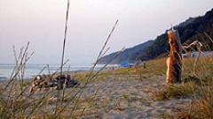 За 34 южни плажа се търсят стопани