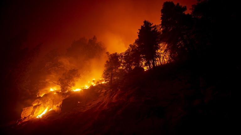 Безпрецедентните пожари по Западното крайбрежие на САЩ са отделили толкова