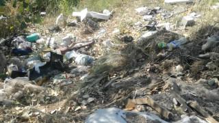 Неработещ басейн във Видин се превърна в сметище