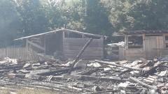 Пожар  изпепели 5 прасета и 10 агнета в Разлог