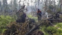 Горски пожари бушуват в Сибир, гъст дим покри Якутск и затвори летището
