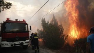 Най-малко 60 души са загинали в пожарите в Гърция